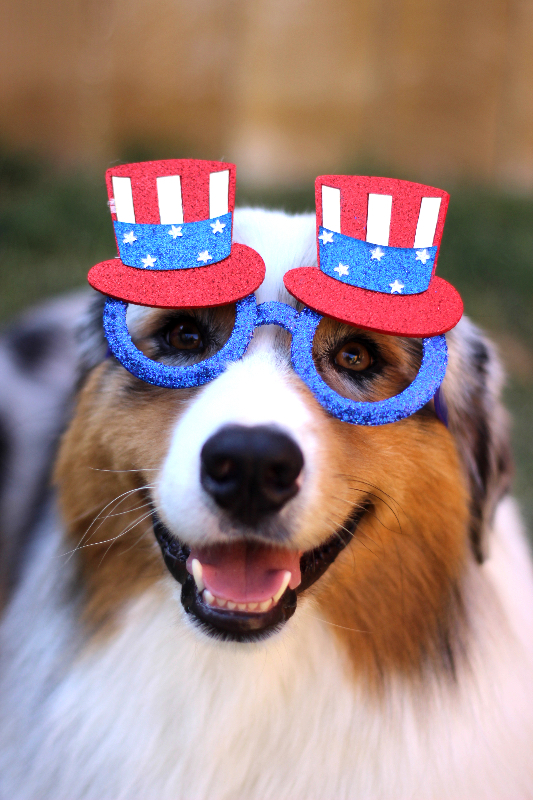 Seven wearing red white and blue glasses to show his speech for his bid for the Presidency